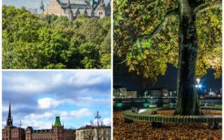 Discover Stockholm, Stockholm Tours